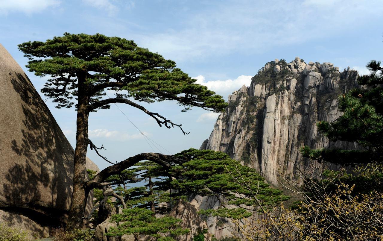 安徽黄山风景区售检票信息化管理系统